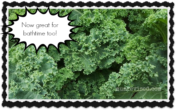25 crafts kale mum revised